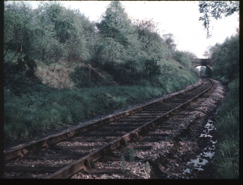 Branch at Frankley Sidings